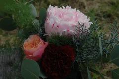 pivoine rose et dianthus
